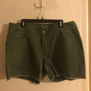 Olive Green Denim Shorts